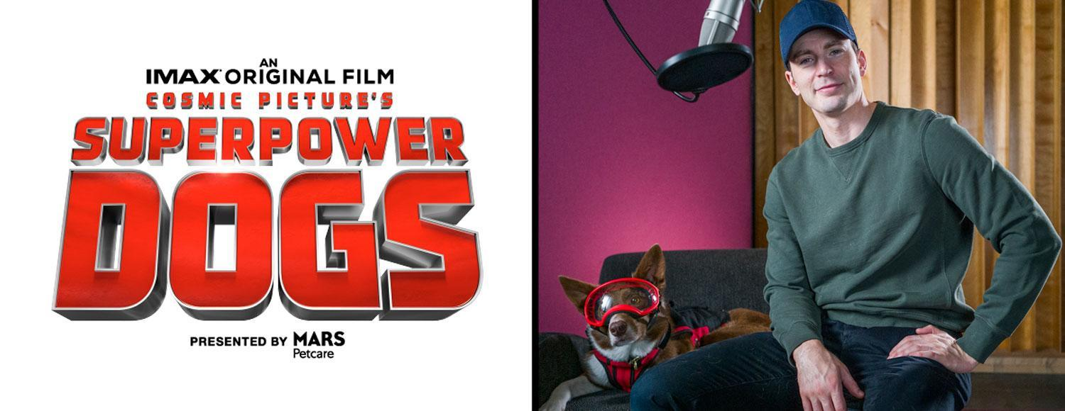 Chris Evans to Narrate IMAX Documentary Superpower Dogs