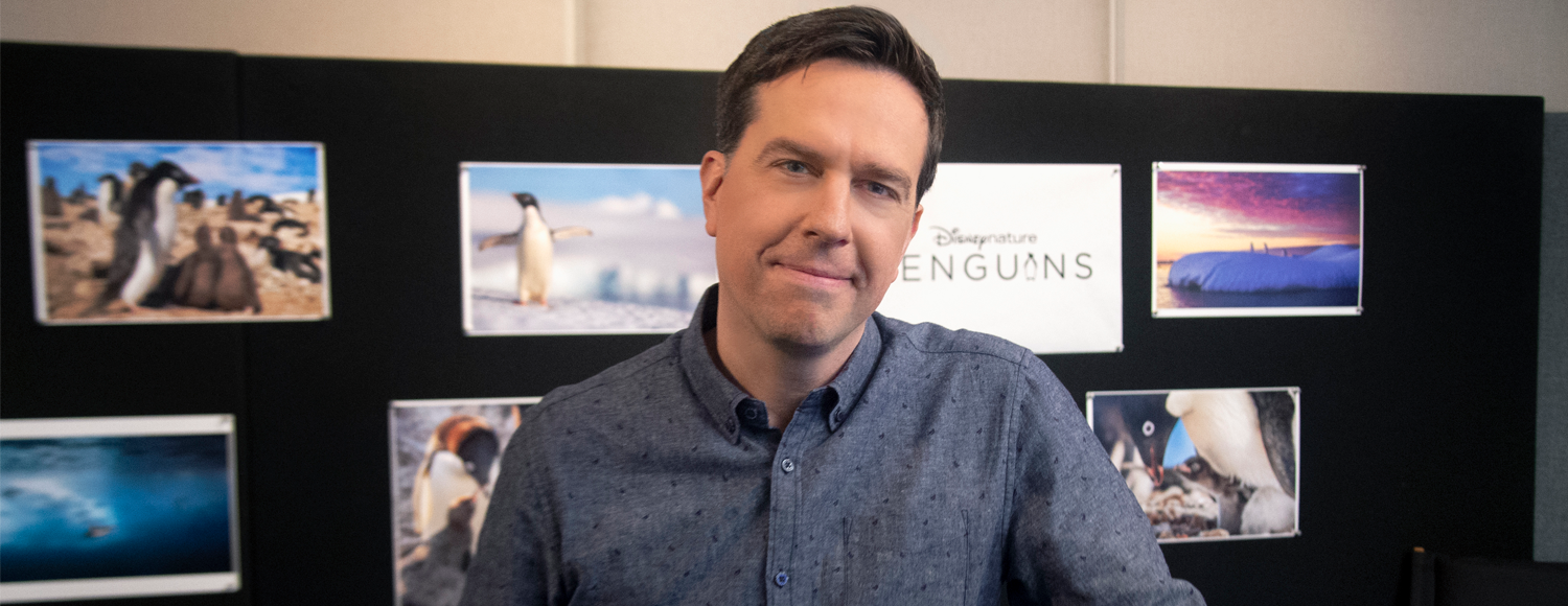 Ed Helms Disneynature's Penguins